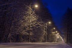 Landschafts-Straße bedeckt mit Schnee Lizenzfreie Stockfotos