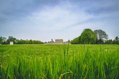 Landschaftsansicht über Gras des englischen Gartens an Cliveden-Haus stockbilder