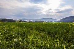 Landschaftsansicht Stockfotografie