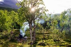 Landschaftsansicht in den schwedischen Norden Gebirgsfluß, lizenzfreie stockfotos