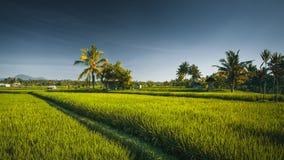 Landschaftsansicht der indonesischen Landschaft stockfotografie