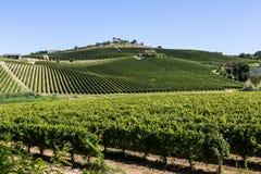 Landschaftsansicht der Natur Marken, Italien Lizenzfreie Stockfotos