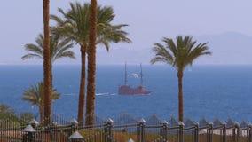Landschaftsansicht des Meeres, der Palmen und des Segelschiffs im Roten Meer, Ägypten, Sharm el Sheikh stock video
