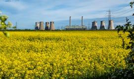 Landschaftsansicht von Kühltürmen eines Kohle getankten Kraftwerks im Vordergrund ist ein helles gelbes Feld des Blühens lizenzfreies stockbild