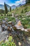 Landschaftsbachflusswasser-Natursommer Stockfotos