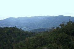 Landschaftsberge Forest Clear Sky Tropical Background stockfoto