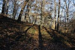 Landschaftsbild des lokalen Hügelnebenflusses Lizenzfreies Stockfoto