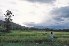 Landschaftsbild des Reisfeldes und -berges mit Sonnenunterganghimmel b stockfotos