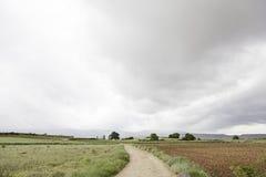 Landschaftsfeld und -himmel stockfotos
