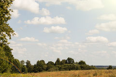 Landschaftsfelder im Herbst mit Wäldern im Hintergrund und in den Wolken oben Stockfotografie
