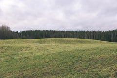 Landschaftsfelder im Herbst - Weinleseeffekt Stockbild