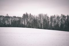 Landschaftsfelder im Winter - Weinleseeffekt Lizenzfreies Stockfoto