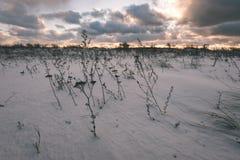 Landschaftsfelder im Winter - Weinleseeffekt Stockfoto