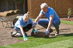 Landschaftsgärtner, die Rasen für neuen Rasen legen lizenzfreies stockbild