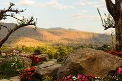 Landschaftsgarten lizenzfreies stockbild