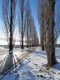Landschaftsgasse im hellen Schnee stockbild