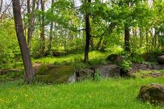 landschaftsgestaltung Lizenzfreies Stockbild