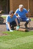 Landschaftsgärtner, die Rasen für neuen Rasen legen Stockfotos