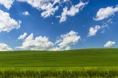 Landschaftshintergrund. Lizenzfreie Stockfotografie