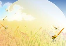 Landschaftshintergrund Lizenzfreies Stockfoto