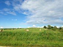 Landschaftslandansicht Lizenzfreies Stockfoto