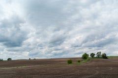 Landschaftslandschaft im Frühjahr Stockfotos