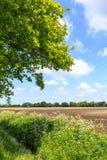 Landschaftslandschaft mit Abzugsgraben und bebautem Bauernhoffeld Stockfotos