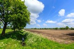 Landschaftslandschaft mit Abzugsgraben und bebautem Bauernhoffeld Lizenzfreie Stockfotos