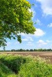 Landschaftslandschaft mit Abzugsgraben und bebautem Bauernhoffeld Lizenzfreies Stockfoto