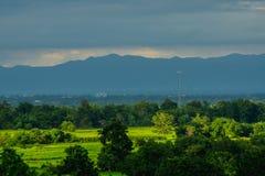 Landschaftslandschaft mit Ackerland- und Waldgrün Lizenzfreie Stockfotos
