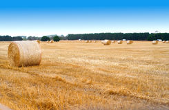 Landschaftslandschaft mit goldenen Ballen Heu Lizenzfreie Stockfotografie