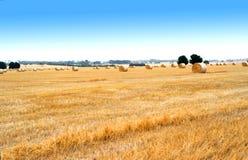 Landschaftslandschaft mit goldenen Ballen Heu Lizenzfreie Stockbilder