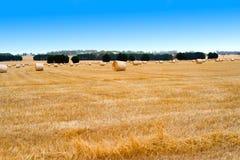 Landschaftslandschaft mit goldenen Ballen Heu Lizenzfreie Stockfotos