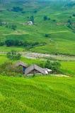 Landschaftslandschaft mit ländlichen Häusern unter Reisterrassen Lizenzfreie Stockbilder