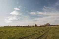 Landschaftslandschaft mit Wiese und Himmel Lizenzfreies Stockfoto