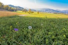 Landschaftslandschaft in Slowenien, ausgeblutete Nachbarschaft stockfotos