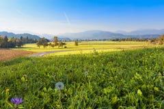Landschaftslandschaft in Slowenien, ausgeblutete Nachbarschaft stockbilder