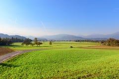 Landschaftslandschaft in Slowenien, ausgeblutete Nachbarschaft lizenzfreie stockbilder