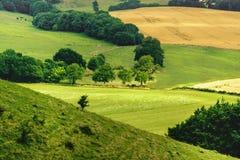 Landschaftslandschaft - Wiltshire - Großbritannien - Ansicht von Cley-Hügel Stockbild
