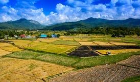 Landschaftslandwirtschaftsbauernhof nach Ernte Stockbilder