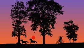 Landschaftsleben am Abend Stockfotografie