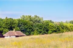 Landschaftslehm und hölzerne Hütte deckten Ukrainer mit Stroh Lizenzfreies Stockfoto