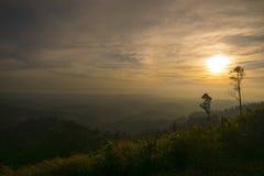 Landschaftsmorgen Stockbild