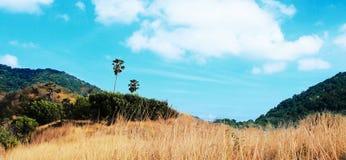 Landschaftsnaturansicht Stockbild