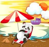 Landschaftspanda, der auf dem Strand sich entspannt Lizenzfreies Stockbild