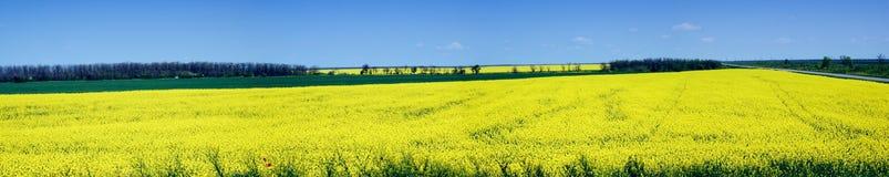 Landschaftspanorama Lizenzfreies Stockfoto