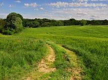 Landschaftsstraße durch die Felder Lizenzfreies Stockbild
