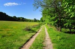 Landschaftsstraße durch die Felder Lizenzfreies Stockfoto