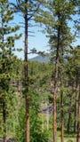 Landschaftsszene eines Antriebs durch das Black Hills stockbild