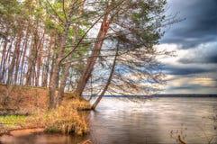 Landschaftswaldhimmel und -wasser Stockfoto